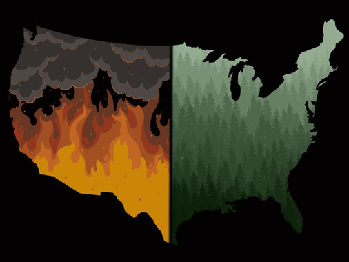 Why the U.S. Should Turn to Natives for Fire-Management