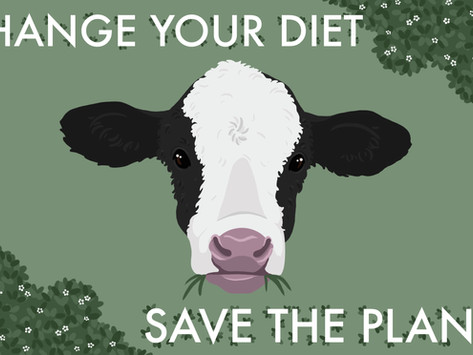 Change Your Diet, Save the Planet
