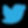 Icon_Twitter.webp