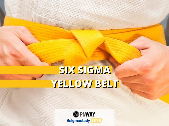 Six Sigma Yellow Belt (SSYB™)