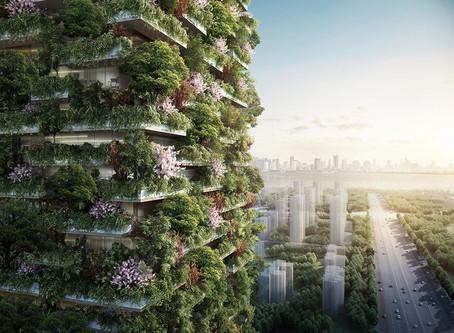 Primeira floresta vertical da China e de toda a Ásia
