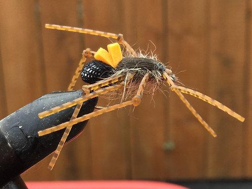 Spiderfly