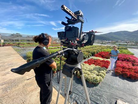 Le telecamere di Geo&Geo raccontano i petali in vaschetta di RaveraBio