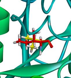 picture show mutaiton of isoleucine into valine