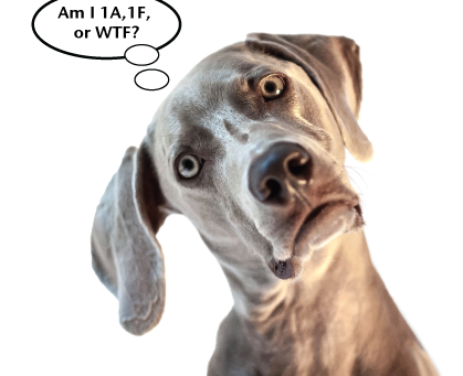 Form 1094-C and 1095-C IRS Recordkeeping Rules Driving Employers CRAZY!