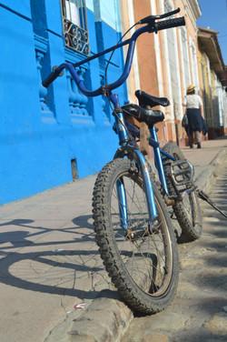 x trinidad bike