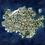 Thumbnail: Continental Map