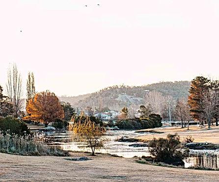 stanthorpe-landscape111.jpg