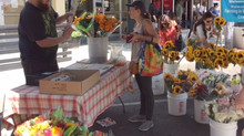 Listening:  At the Farmers Market, At the Monastery