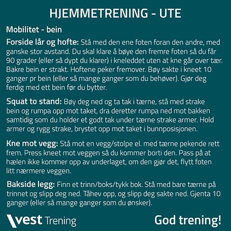 Hjemmetrening Ute 0104.png