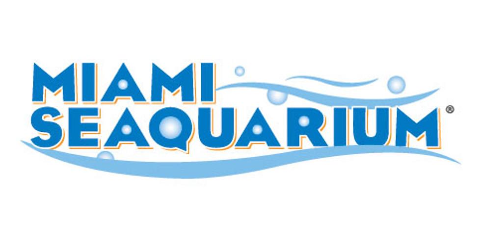 Miami Seaquarium Field Trip