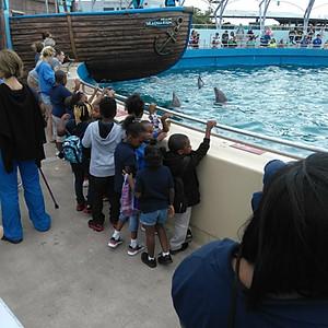 Preschool - Third Grade visit the Miami Seaquarium