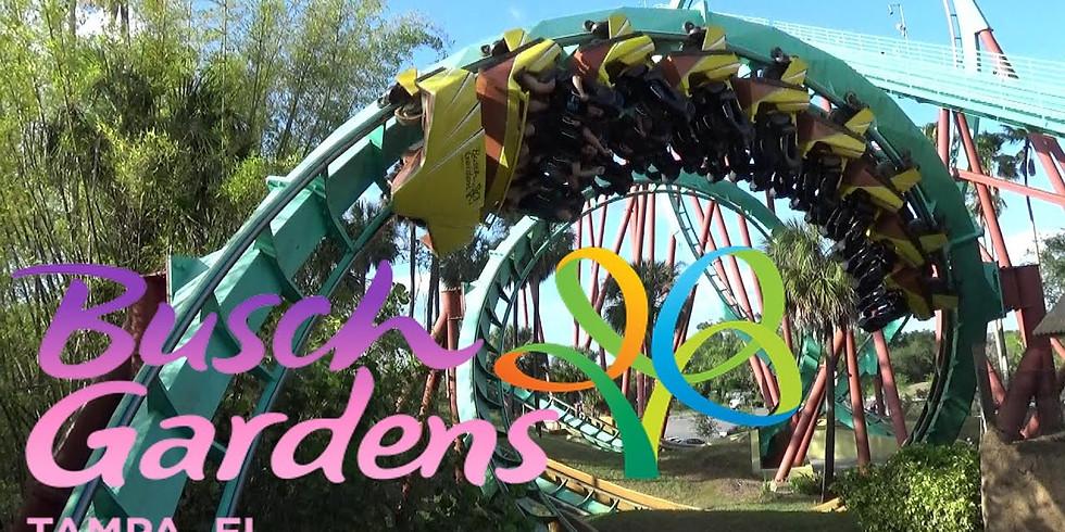 End of Year Field Trip - Busch Gardens