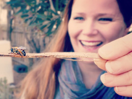 A Sweet Lil' Bee Helped Liz Harper Quit Her Office Day Job & Change The World A Lil' Bit At A Time