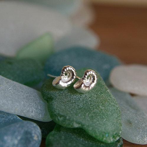 silver spiral shell earrings