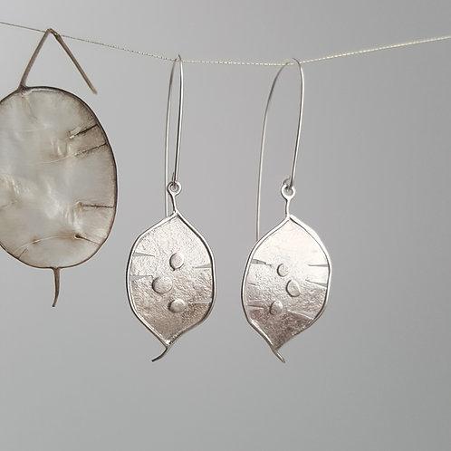 Lunaria -Honesty Earrings