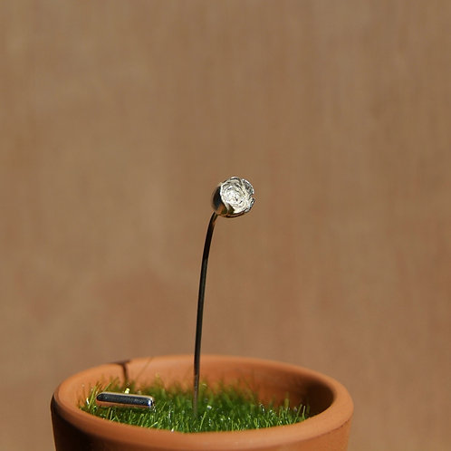 silver rose pin in flower pot