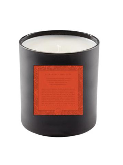 Soy Candle | Clementine + Water Lily