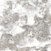 Web_Tundra.png