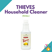 SN Thieves Household Cleaner.png