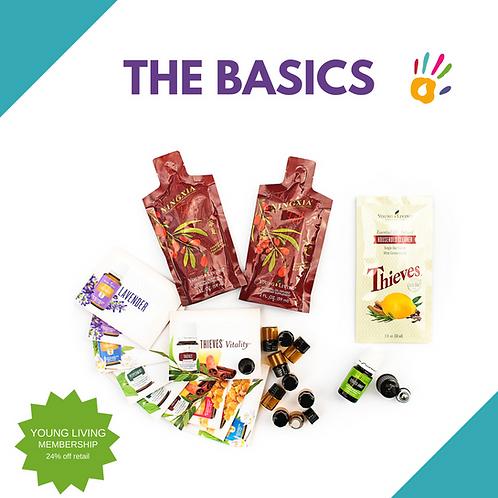 5: Beginner's Basics