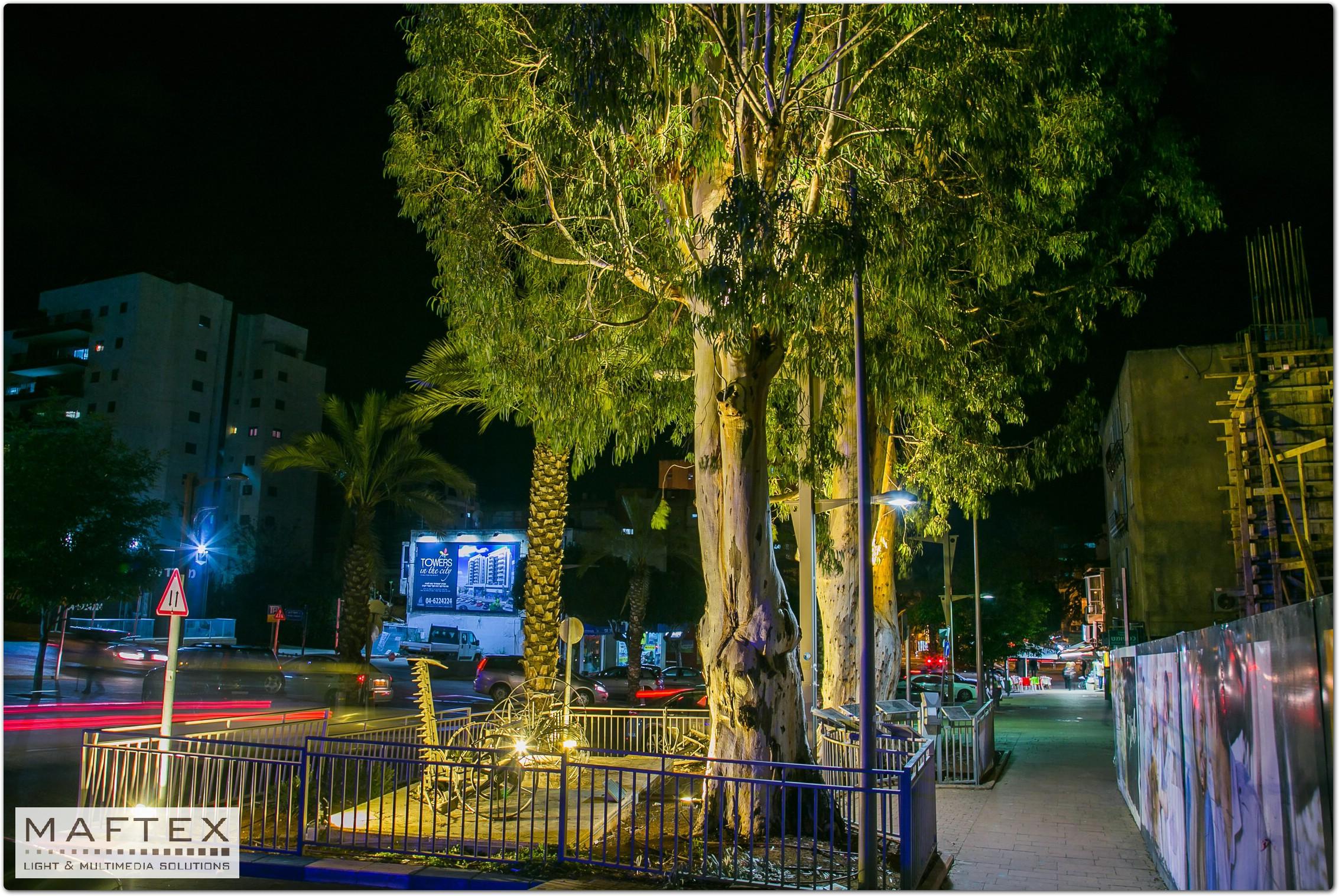 תאורה לקישוט עצים