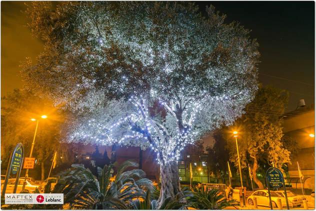תאורה מנצנצת לעץ