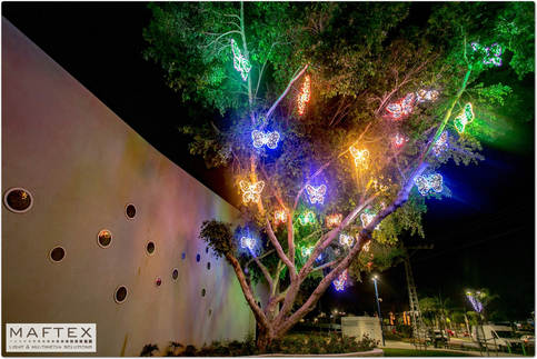 קישוטי תאורה לעיר - שדרת הפרפרים