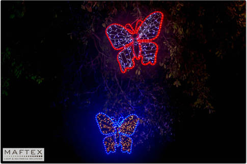 The Butterflies Tree