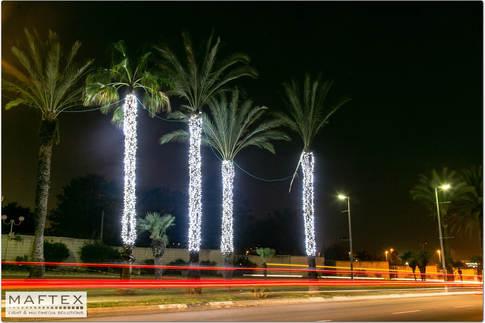 תאורה לעצים