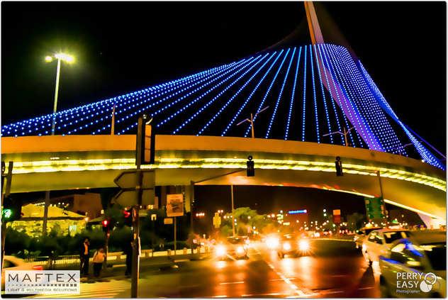 THE CALATRAVA BRIDGE