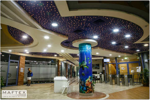 DECORATIVE CEILING - COUNTRY CLUB