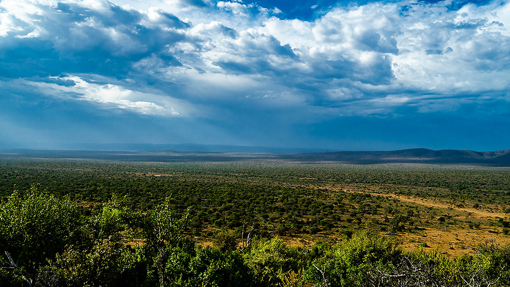 After our afternoon Game Drive we stopped to appreciate this beautiful view from the top of the Karoo mountain