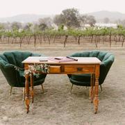 Velvet petal chairs