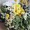 Thumbnail: Wildflower bouquet $55+