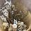 Thumbnail: Everlasting Floral Bouquet $65+