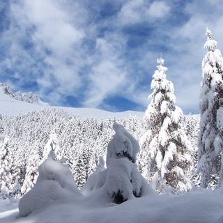 2 Lova inverno 2009.JPG