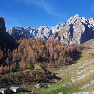 5 Camino e malga Varicla.JPG