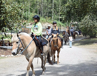 Lang's Horse and Pony Farm | Trails and More Camp