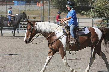 Lang's Horse and Pony Farm | Riding Lessons