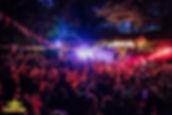 kelburn-psychedelic-forest-carnival-2016