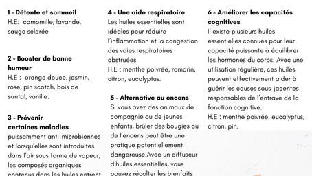 SHOPPING : LE CAS DU DIFFUSEUR D'INTERIEUR