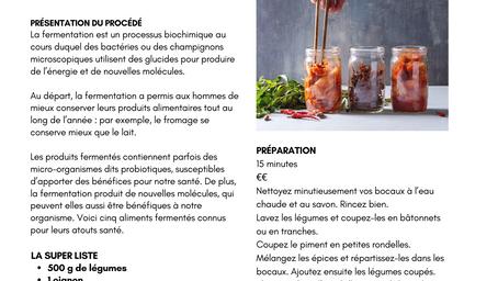 NUTRITION : FERMENTATION MODE D'EMPLOI ET INTERÊTS