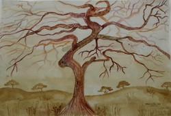 Zen Triptage 1 - Far Reaching Tree