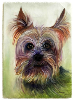 Dog in Oils by Dharmisha Cvetkovic
