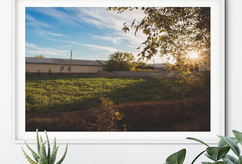 Destination Goals - Farm Life