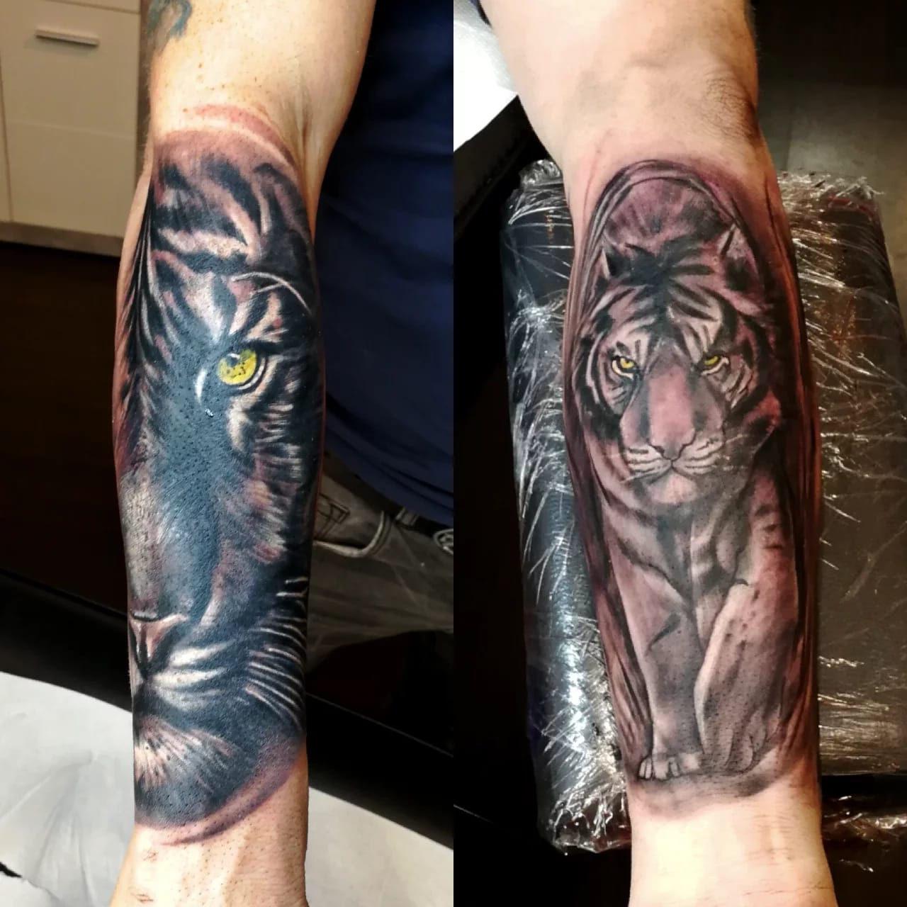 9 Tiger.jpg