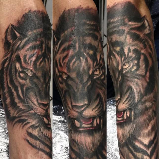 17 Tiger.jpg