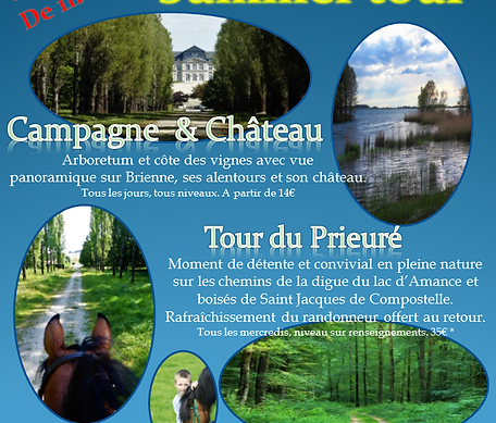 affiche-summer-tour_edited.png
