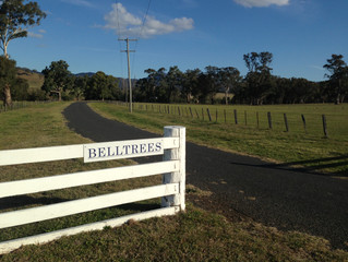 Belltrees - Birthplace of the Last Woman Hanged